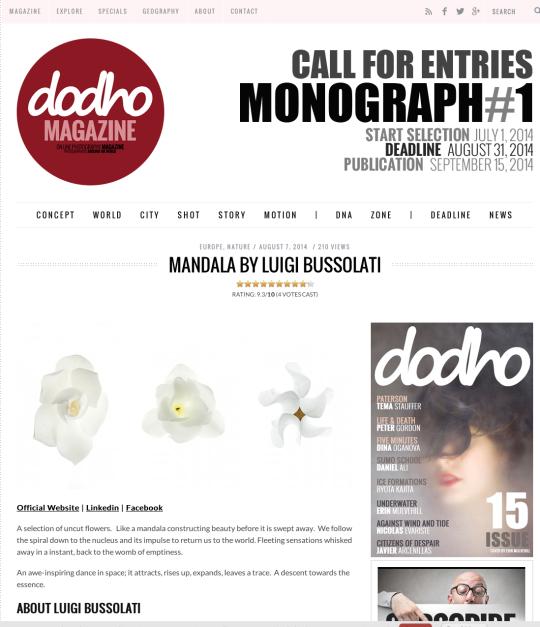 dodho_magazine